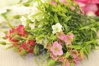 Цветы ,букет (микс), 35 см, упак. 3 шт